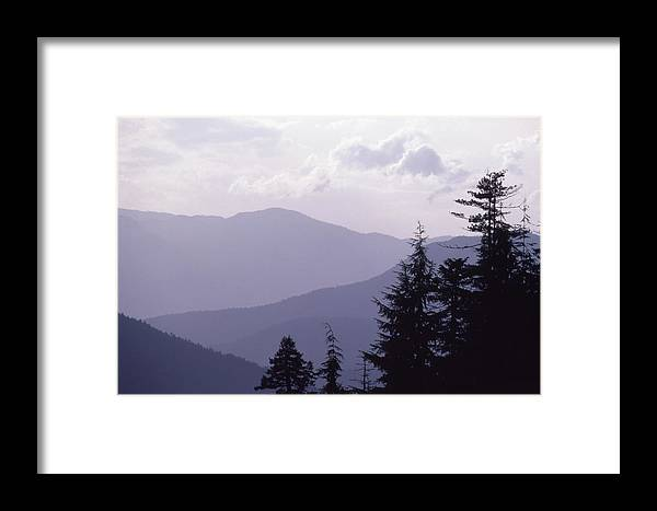 Abstract Framed Print featuring the photograph View From The Trees by Lyle Crump