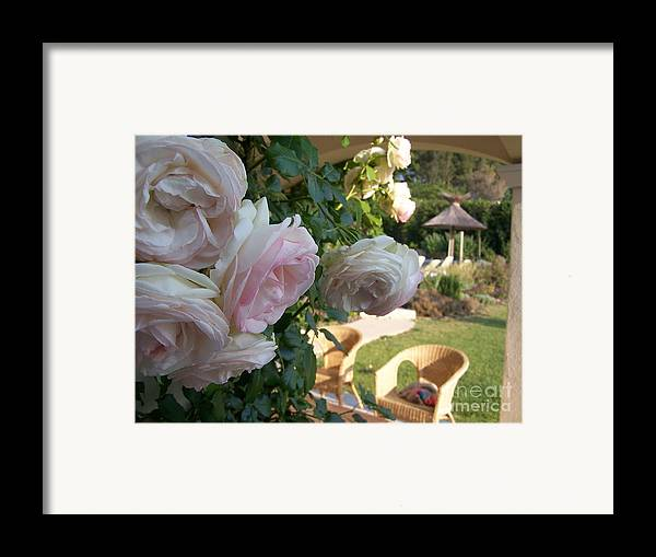 Roses Framed Print featuring the photograph Villa Roses by Nadine Rippelmeyer