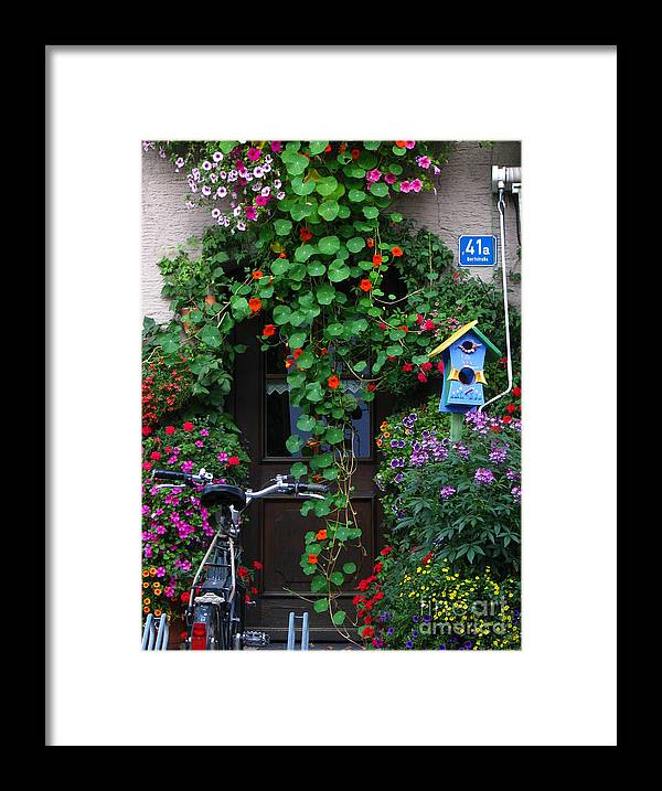 Vines Framed Print featuring the photograph Vines Over Door by Jeff White