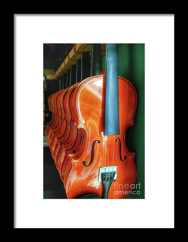 Violins Hanging In A Row Framed Print featuring the photograph Violins For Sale by John Myers