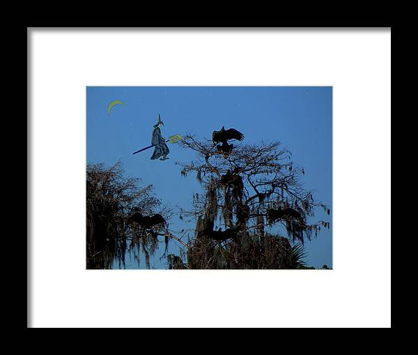Vultures Framed Print featuring the photograph Vultures And The Witch by Rosalie Scanlon