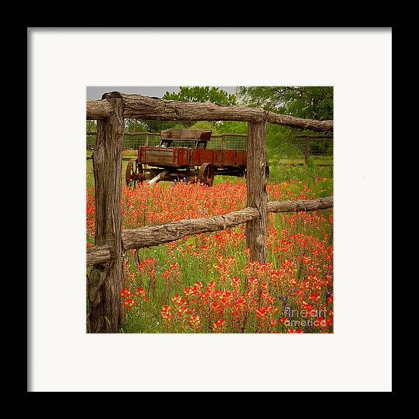 Spring Framed Print featuring the photograph Wagon In Paintbrush - Texas Wildflowers Wagon Fence Landscape Flowers by Jon Holiday