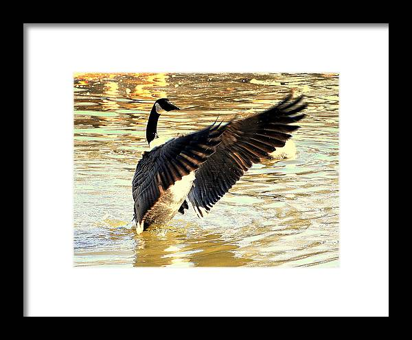Akeview Framed Print featuring the digital art Wait For Me by Aron Chervin