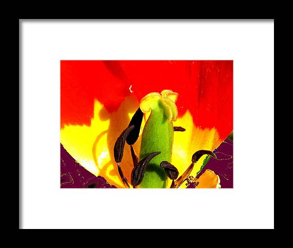 Abstract Framed Print featuring the photograph Waiting by Ian MacDonald