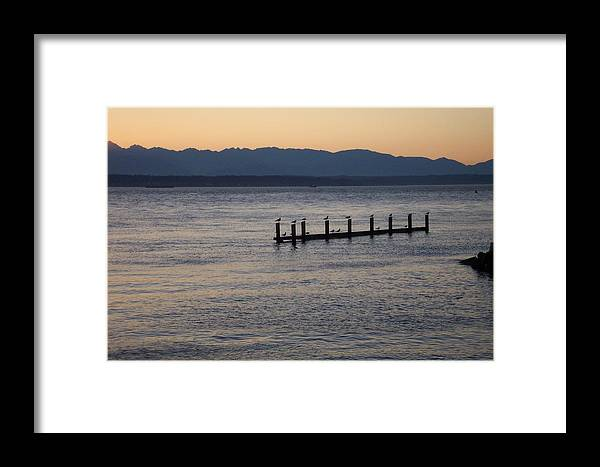 Puget Sound Framed Print featuring the photograph Waiting by James Johnstone