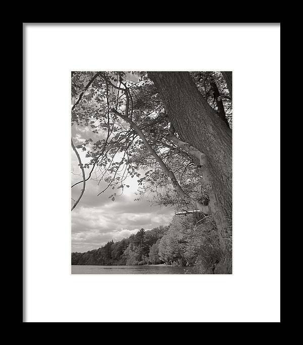 Walden Pond Framed Print featuring the photograph Walden Pond by Heather Weikel