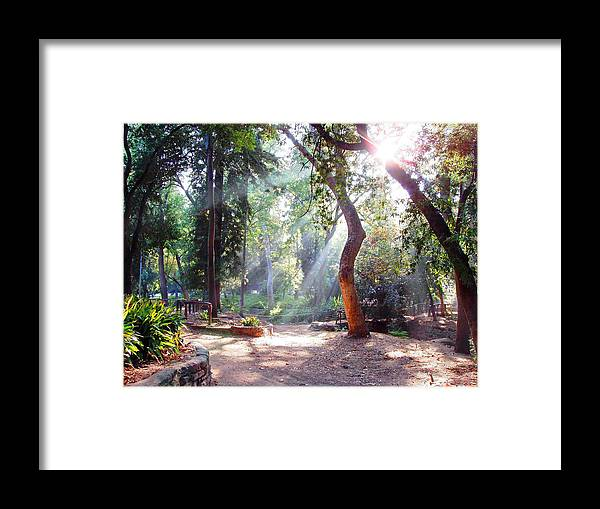 Spiritual Framed Print featuring the photograph Walk In The Park by Randy Sprout