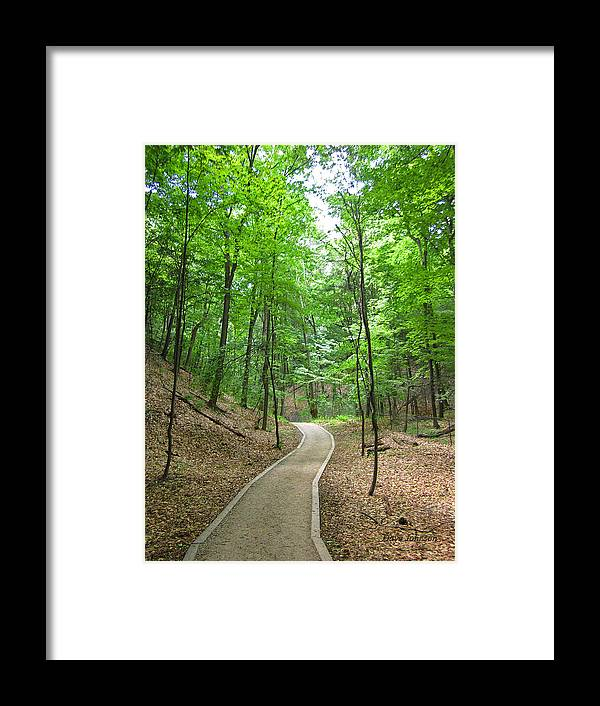 Lake Shore Framed Print featuring the photograph Walk In The Woods by Dave Johnson