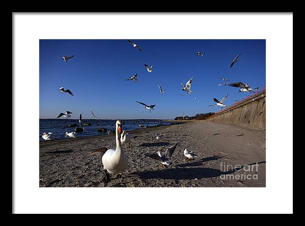 Sky Framed Print featuring the photograph Walk by Vadim Grabbe