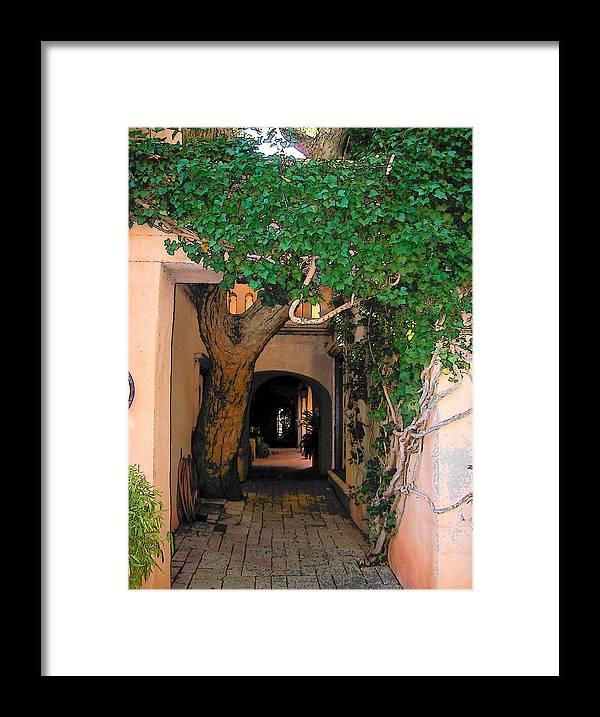 Sedona Framed Print featuring the photograph Walk Way by Leo Gordon