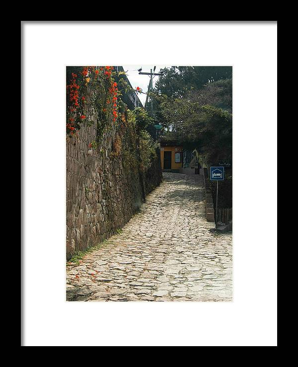 Alleyway Framed Print featuring the photograph Walking The Streets Of Santa Lucia - 2 by Hany J