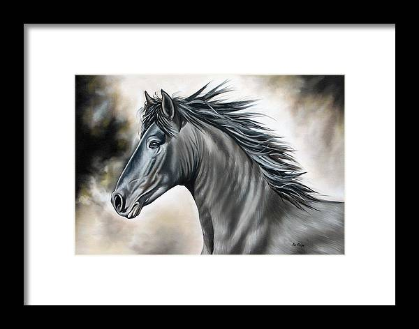 Horse Framed Print featuring the painting Wanapun by Ilse Kleyn