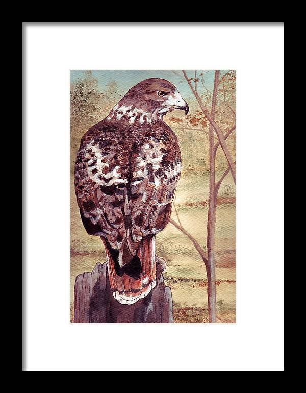 Red-tail Framed Print featuring the painting Watch Hawk by Debra Sandstrom