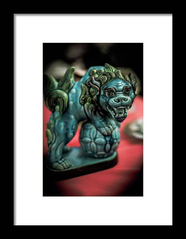 Australia Framed Print featuring the photograph Watcher by Paradigm Blue