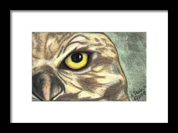 Owl Framed Print featuring the drawing Watchful Eye by Jennifer Skalecke
