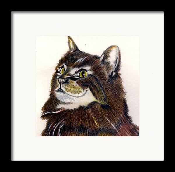 Animal Framed Print featuring the drawing Watching by Penny Everhart