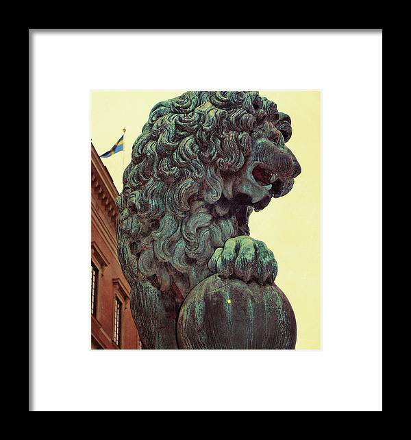 Lion Framed Print featuring the photograph Watchman by JAMART Photography