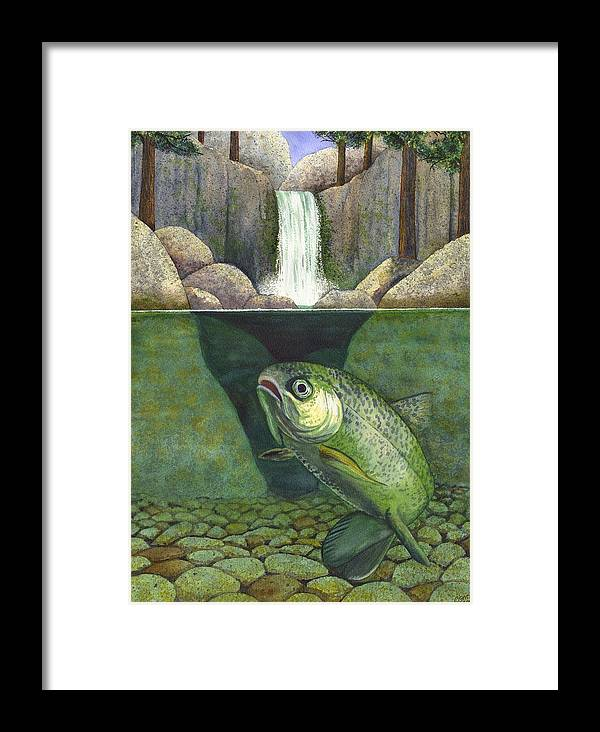 Trout Framed Print featuring the painting Water by Catherine G McElroy