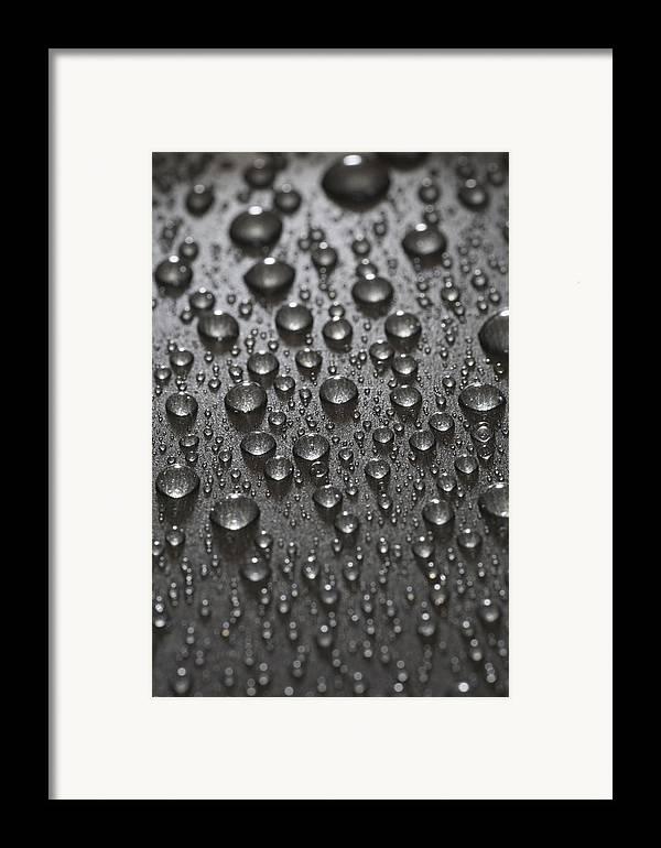 Frank Tschakert Framed Print featuring the photograph Water Drops by Frank Tschakert