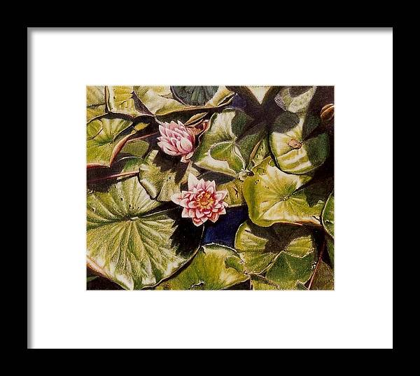 Pink Framed Print featuring the painting Water Lilies On The Ringdijk by Constance Drescher