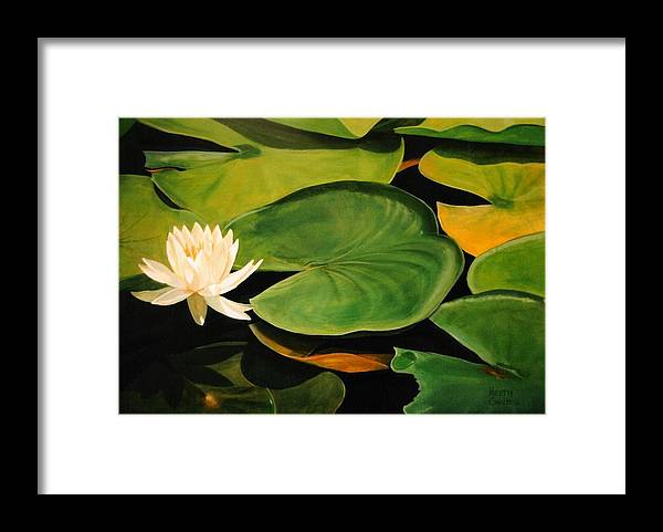 Lily Framed Print featuring the painting Water Lily by Keith Gantos