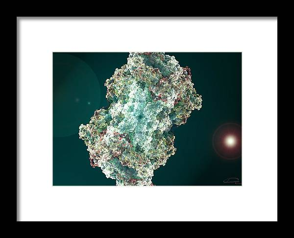 Sponge Framed Print featuring the painting Water Sponge by Emma Alvarez