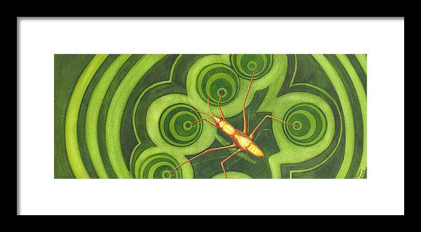 Strider Framed Print featuring the painting Water Strider by Catherine G McElroy