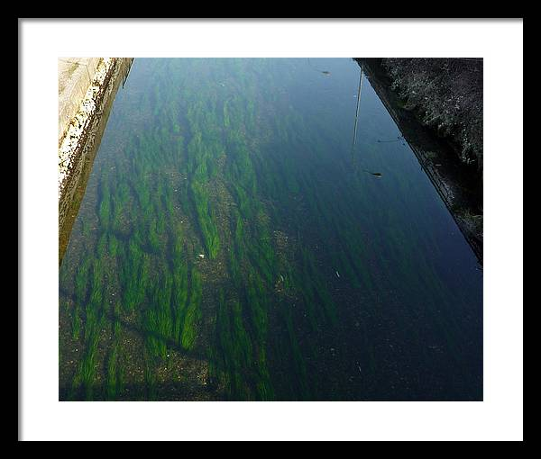 Water Framed Print featuring the photograph Water2 by Mikael Gambitt