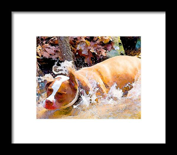 Dpg Framed Print featuring the digital art Waterdog by John Toxey