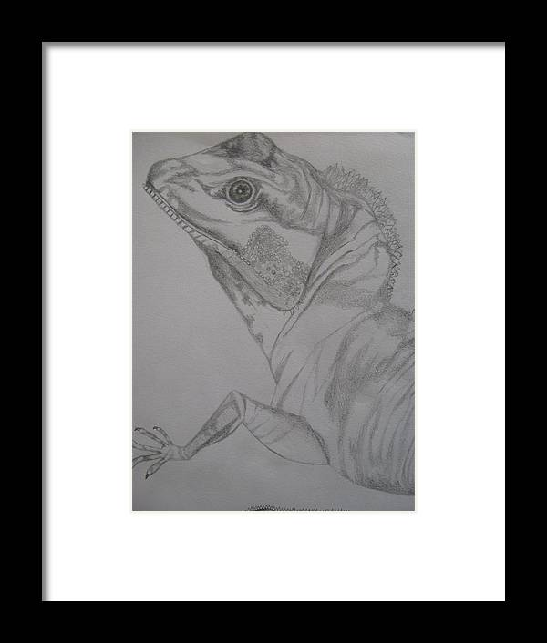 Dragon Framed Print featuring the drawing Waterdragon Vertical Close Up by Theodora Dimitrijevic