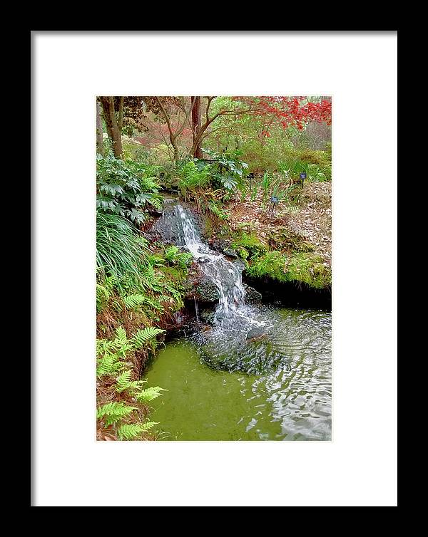 Photography Framed Print featuring the photograph Waterfall In The Forest by Marian Bell