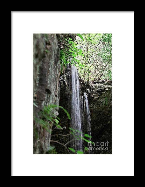 Waterfall Framed Print featuring the photograph Waterfall Portrait by Wesley Farnsworth