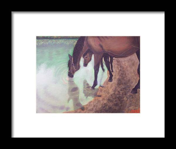 Horses Water Land Scape Reflection Framed Print featuring the painting Watering Hole by Charles Vaughn