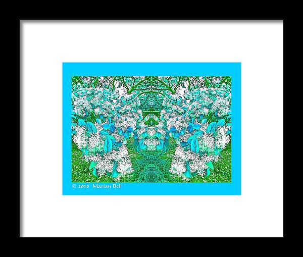 Photography Framed Print featuring the digital art Waxleaf Privet Blooms In Aqua Hue Abstract With Aqua Frame by Marian Bell