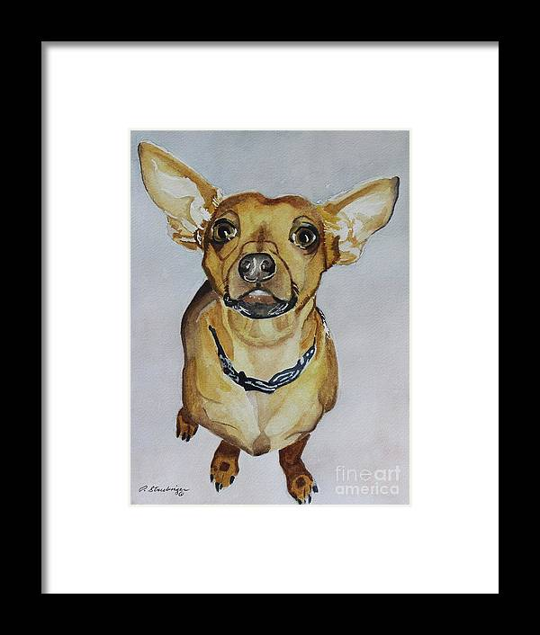 Chihuahua Dog Painting Framed Print featuring the painting Waz Up by Patty Strubinger