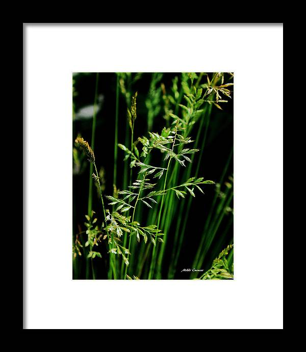 Nature Framed Print featuring the photograph Weeds by Mikki Cucuzzo
