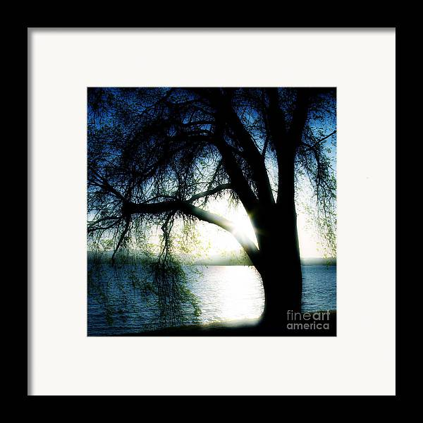 Weesping Framed Print featuring the photograph Weeping by Idaho Scenic Images Linda Lantzy