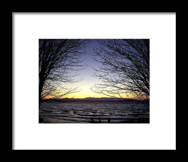 Trees Framed Print featuring the photograph Welcome by Kevin D Davis