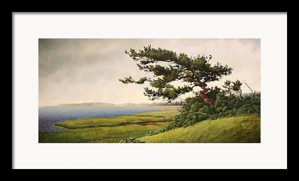 Cape Cod Framed Print featuring the painting Wellfleet Saltmarsh by Stephen Bluto