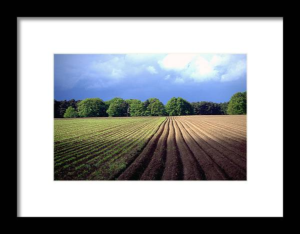 Wendland Framed Print featuring the photograph Wendland by Flavia Westerwelle
