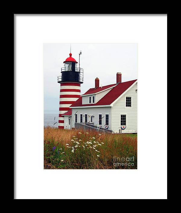 Eastport Maine Framed Print featuring the photograph West Quoddy Head Light by Brenda Giasson