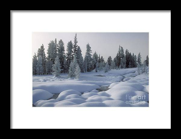 Yellowstone Framed Print featuring the photograph West Thumb Snow Pillows by Sandra Bronstein