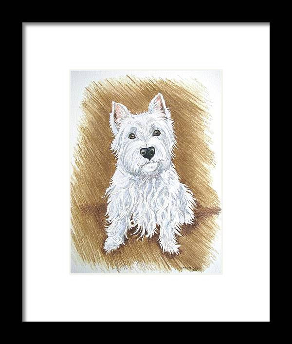 Portrait Framed Print featuring the drawing Westie by Linda Williams