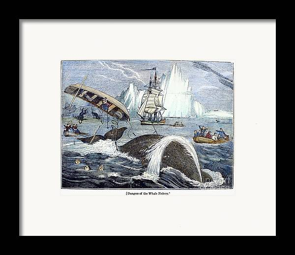 1833 Framed Print featuring the photograph Whaling, 1833 by Granger
