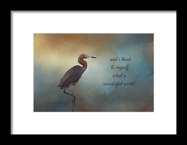 Reddish Egret Framed Print featuring the photograph What A Wonderful World by Kim Hojnacki