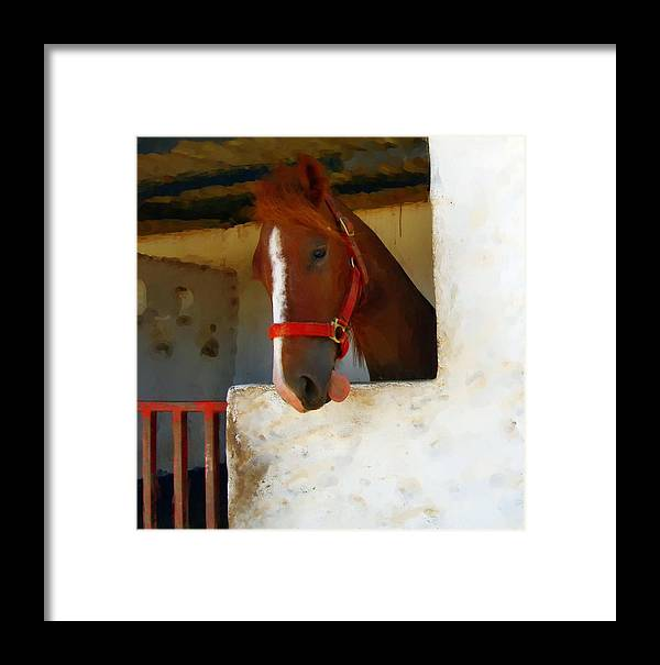 Horse Framed Print featuring the painting What Do Horses Think Of Us by Jonathan Galente