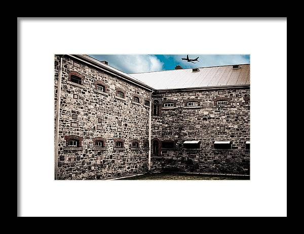 Freedom Framed Print featuring the photograph What Freedom Means by Kelly King