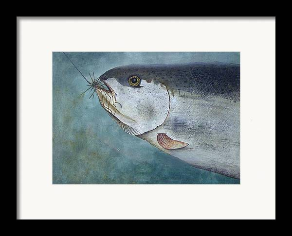 Fish Framed Print featuring the painting What's For Dinner by Scott Plaster