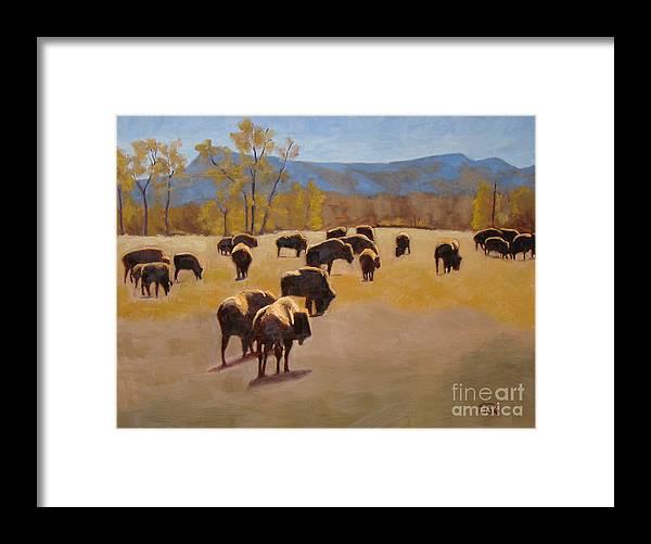 Buffalo Framed Print featuring the painting Where the buffalo roam by Tate Hamilton