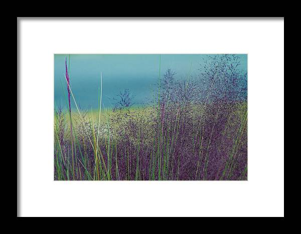 Field Framed Print featuring the photograph Whispy Field by Paul Gibson